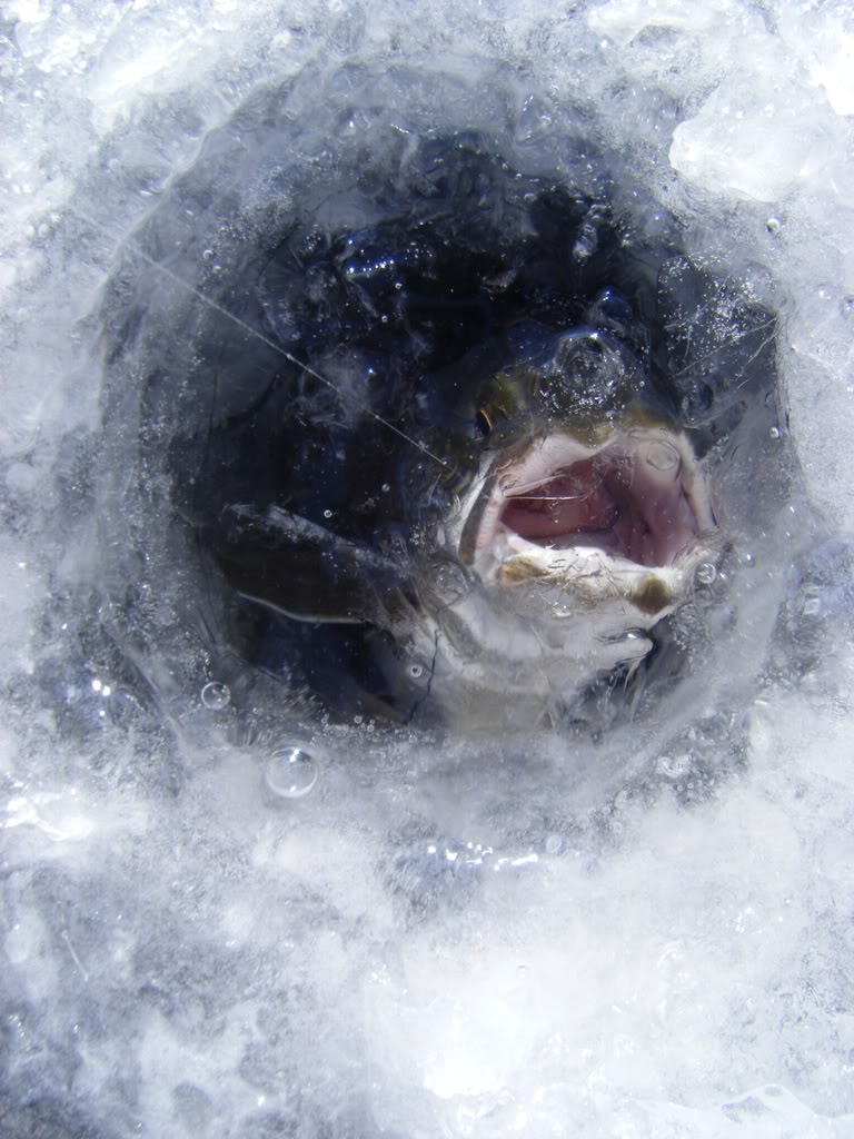 ice fishing hole - photo #46